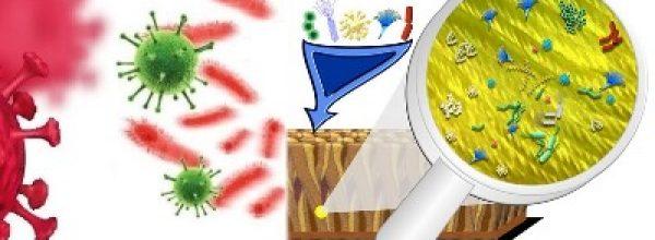 Τα μικροβιωματικά του εσωτερικού περιβάλλοντος και οι συνεχείς απολυμάνσεις !!